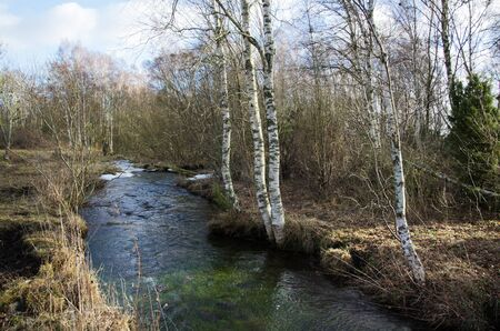 oland: Springtime by a small creek at the swedish island Oland Stock Photo