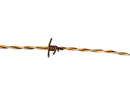 barb wire isolated: Detail of a rusty barb wire isolated on white background