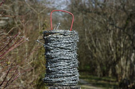 bare wire: Barb wire roll with a natural background of blurred trees and bushes