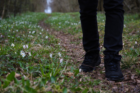 recreational: Recreational walk on a footpath surrounded of flowers at spring