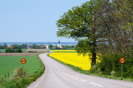 Country road to a swedish village at the island Oland at spring Stock Photo