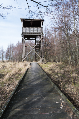 Wooden footpath to the bird watching tower in a nature reserve at the swedish island Oland