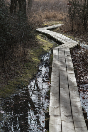 Curved wooden footpath through a wetland at spring season Stock Photo