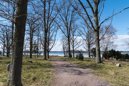 Winding walkway by seaside at springtime