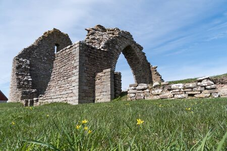 Spring flowers by an old chapel ruin at the island Oland in Sweden