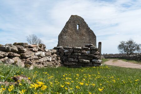 Springtime by the old ruin of Saint Knuts Chapel at the swedish island Oland Stock Photo