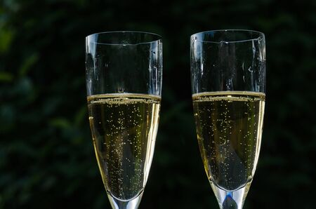Close up image of two glasses with sparkling chanpagne at a dark green background
