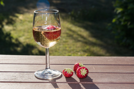 Backlit glass with sparkling wine and strawberries on a tble in a grden Lizenzfreie Bilder