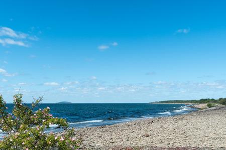 Coastline at the swedish island Oland with the national park Blue Virgin Island in the horizon Stock Photo