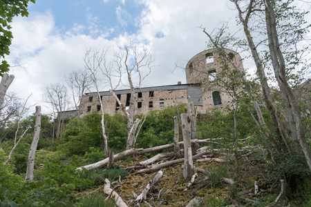 The back of Borgholm castle ruin in Sweden with dead trees on the slope