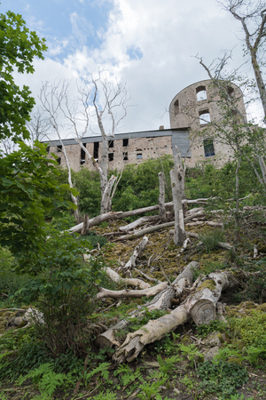 Borgholm castle ruin in Sweden from the back with dead trees on the slope