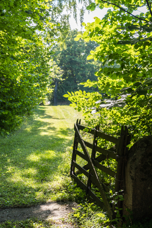 Open old wooden gate in a green landscape at the swedish island Oland