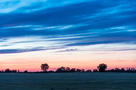 Colored sky with tree silhuettes in the horizon by sunset Stock Photo