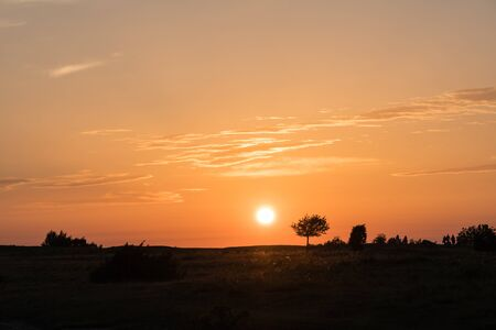 Colorful sunset by a plain grassland with silhouettes at the swedish island Oland