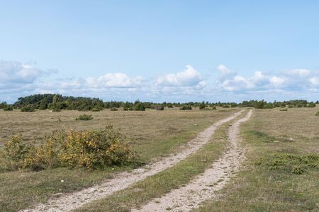 Winding dirt road in a barren landscape at the swedish island Oland