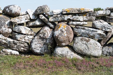 Traditinal dry stonewall in farmlands at the swedish island Oland