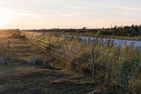 Sunlit fence by roadside at twilight at the swedish island Oland