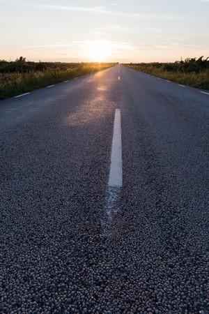 Sunlit asphalt road straight into a plain landscape at the swedish island Oland