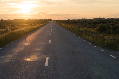 Straight country road in an open landscape by sunset at the swedish island Oland