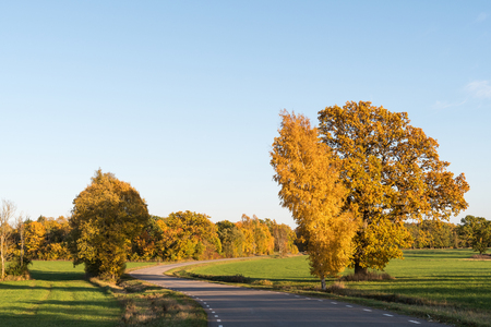 Winding road surrounded with beautiful colored trees at fall season on the swedish countryside