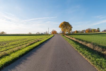 Straight road into a colorful fall season colored landscape Stock Photo