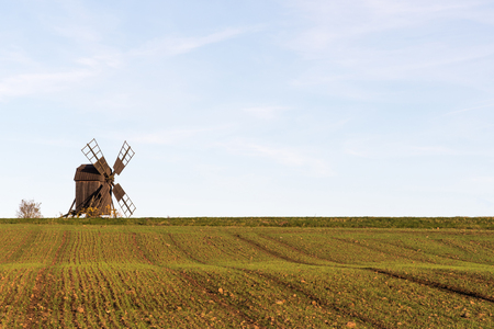 Old wooden windmill by a farmers growing corn field at the swedish island Oland Stock Photo