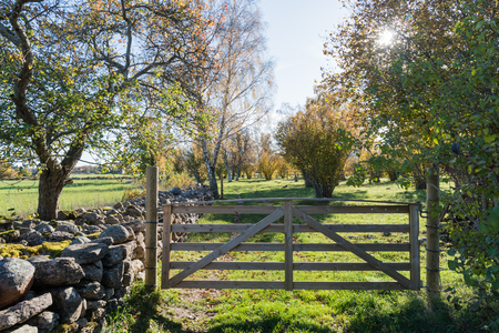 Closed wooden gate in a colorful landscape by fall season