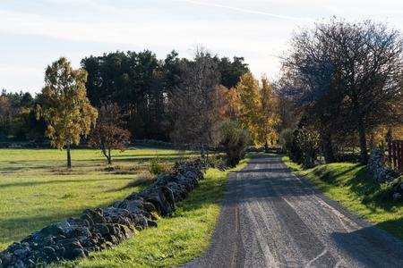 Beautiful gravel road in fall season colors at the swedish countryside Stock Photo