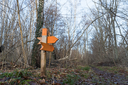 Orange wooden arrows pointing out the directions by a footpath in a forest