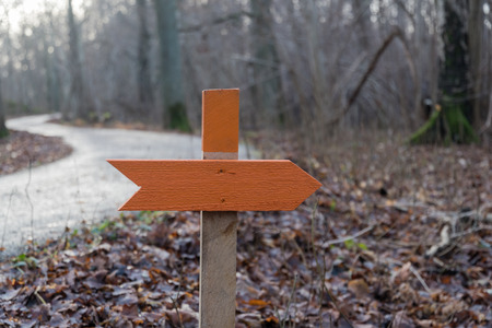 Orange wooden arrow pointing out the direction by a winding road in a forest