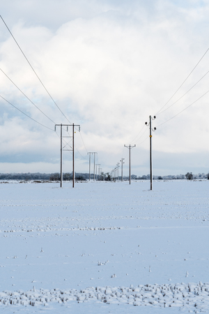 Electric power lines in a snowy field Stock Photo