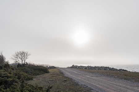 Misty coastal road view from the swedish island Oland in the Baltic Sea Stock Photo
