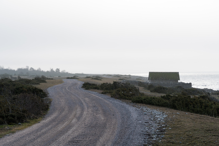 Landscape with a winding gravel road a misty morning along the coast of the swedish island Oland