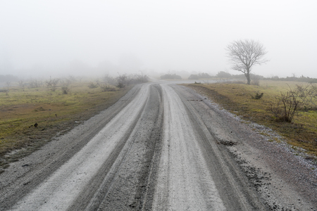 Misty country road through a barren landscape at the swedish island Oland in the Baltic Sea