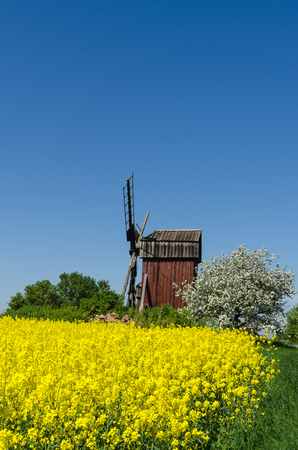 Old wooden windmill surrounded of beautiful colors at the swedish island Oland