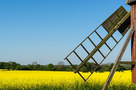 Old wooden windmill by a blossom rapeseed field at the swedish island Oland Stock Photo