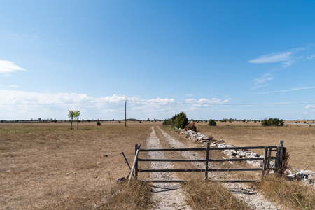Old wooden gate by a dirt road in a great plain landscape at the swedish island Oland