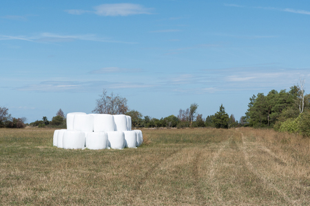 Stacked hay bales in a stubble field Stock Photo