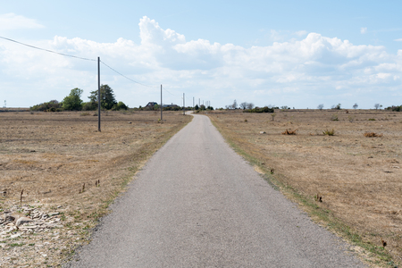 Narrow country road in a dry and plain grassland at the  swedish island Oland