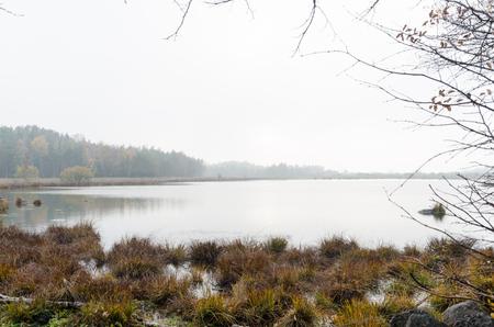 Calm misty pond by fall season at the swedish island Oland