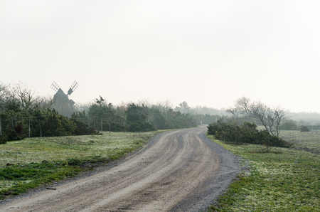 Misty gravel road in an autumnal landscape at the swedish island Oland