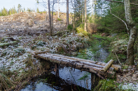 Simple bridge made of logs crossing a small creek in the woods