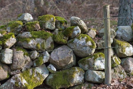 Traditional old mossy stone wall and barbed wire as a fence in a farmland