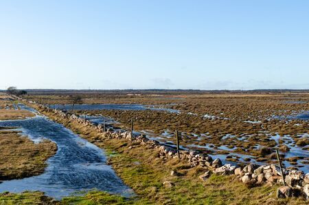 Flooded landscape by early springtime at the swedish island Oland