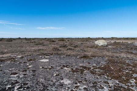 Open limestone bedrockin an unique great alvar landscape on the island Oland in Sweden