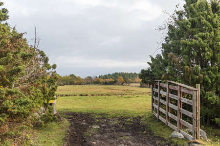 Open gate into a fall colored landscape on the island Oland in Sweden