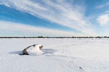 Winter view in the great plain landscape at Stora Alvaret on the island Oland in Sweden Standard-Bild