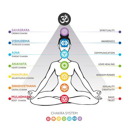 Chakras system of human body - used in Hinduism, Buddhism and Ayurveda. For design, associated with yoga - poster, banner. Vector Sahasrara, Ajna, Vishuddha, Anahata, Manipura, Swadhisthana, Muladhara Illustration