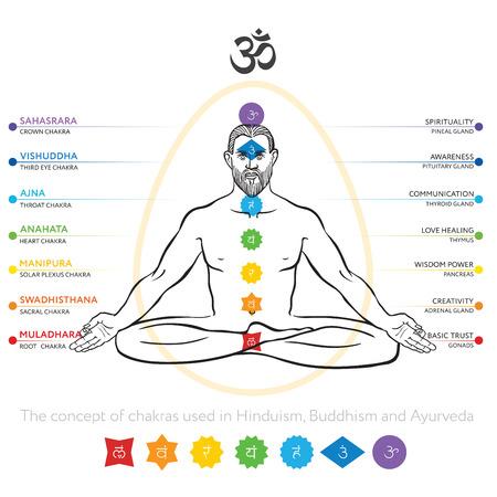 Chakras system of human body - used in Hinduism, Buddhism and Ayurveda. Seven icons. For design, associated with yoga. Vector Sahasrara, Ajna, Vishuddha, Anahata, Manipura, Svadhisthana, Muladhara