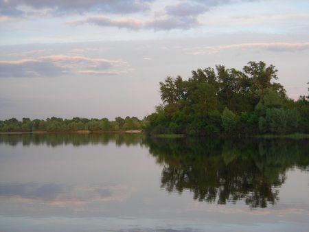 Tree Reflection photo